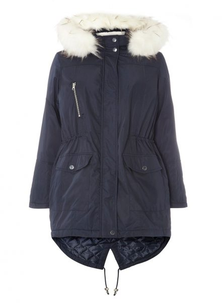 evans plus size coat